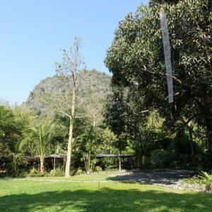 Pha Tad Ke Botanical Garden Half Day Tour