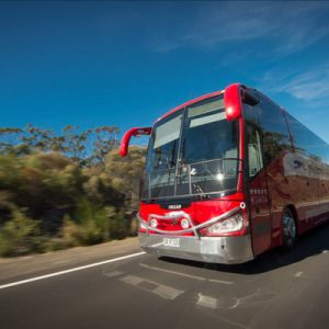 Greyhound Australia's bus