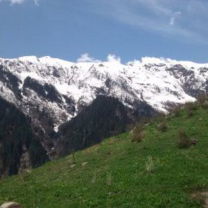 view on the trek