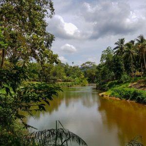 sinharaja forest reserve hike
