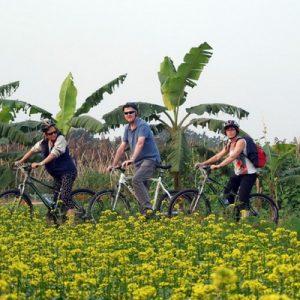 Hanoi bike discovery tour