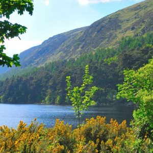 county wicklow tours from dublin, glendalough valley walk, glendalough valley ireland, glendalough glacial valley