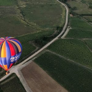 aerial shot of hot air balloon over burgundy