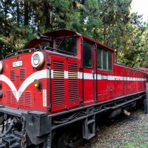 a red train in Alishan Forest
