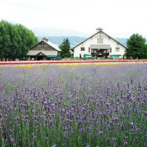 asahiyama zoo furano scenic day trip bus ticket hokkaido