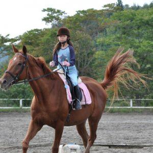 kid horseback riding in tokyo