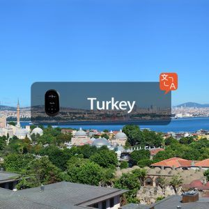 travis translator hong kong airport pick up istanbul turkey