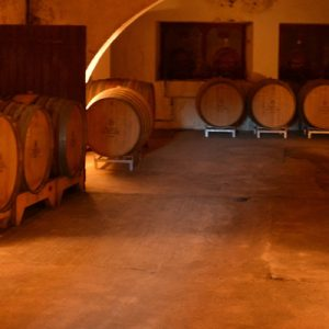 a wine cellar in a provencal winery