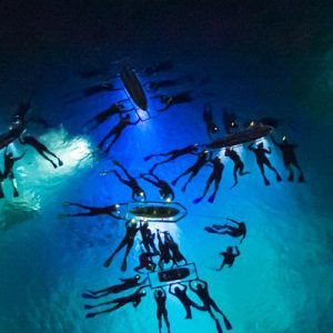 Manta Ray Night Dive in Hawaii