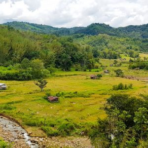 countryside view of tambunan