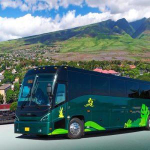 Maui Island airport transfer service