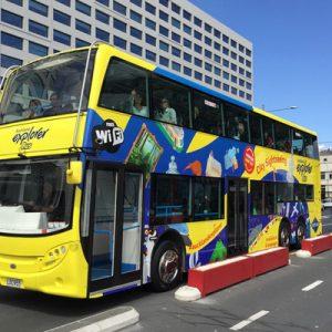 auckland hop on hop off bus tour