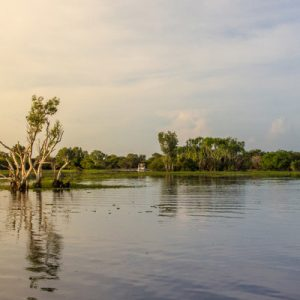 kakadu national park explorer