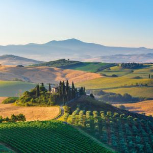 montalcino montelcino pienza wine tasting florence