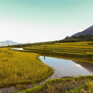 Mai Chau and Na Phon Village Day Tour by Bus from Hanoi