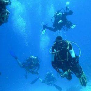 havelock island scuba diving