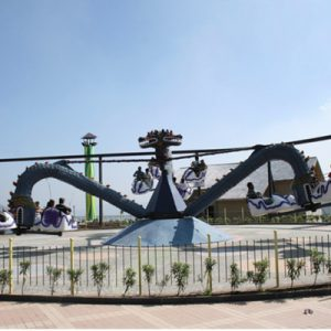 octopus ride at on wheelz amusement park