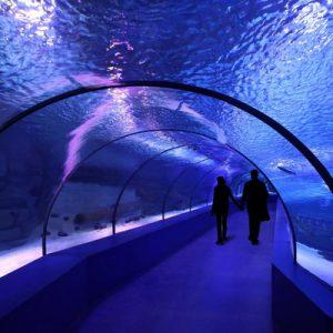 antalya aquarium turkey