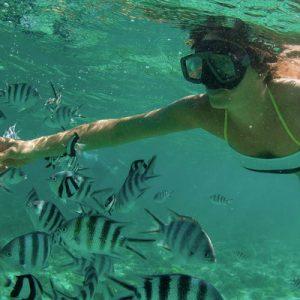 体验浮潜的乐趣