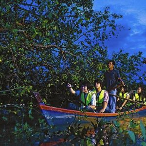 fireflies tour malaysia