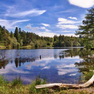 温德米尔湖游轮, 霍克斯黑德村, 英国湖区之旅, 伦敦湖区
