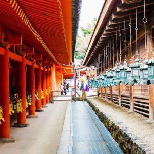 午后奈良的文化之旅
