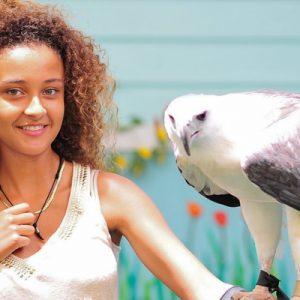 普吉岛鸟类公园