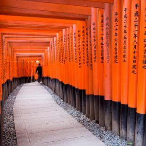 京都清酒与伏见大社私人导览