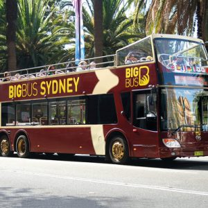 悉尼观光巴士