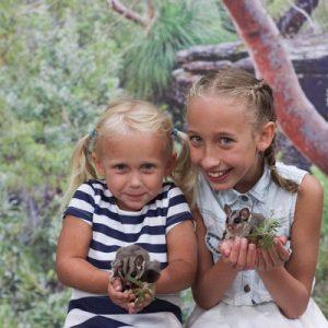 雪梨费瑟戴尔野生动物园门票