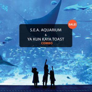 s.e.a.海洋馆门票,新加坡海洋馆,新加坡亚坤