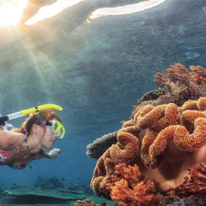 南湾外海平台式潜水体验
