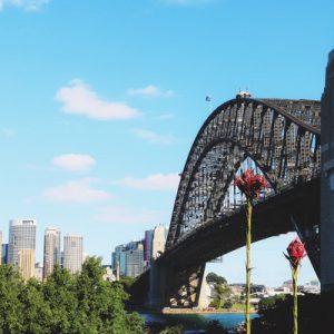 悉尼网红景点精品一日游