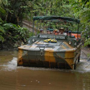 库兰达雨林鸭子船游