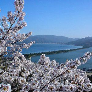 天桥立&美山一日游- 大阪/京都出发