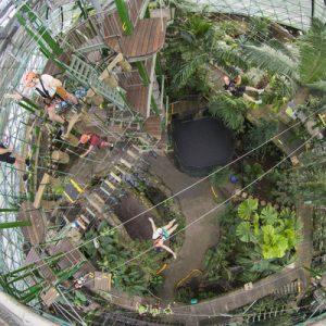 凯恩斯室内穹顶野生动物园门票