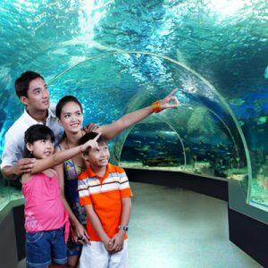 马尼拉海洋公园门票(海底探险通票